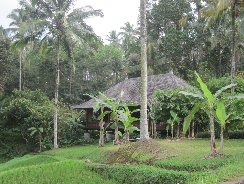 An Eco Haven Selemadeg  Indonesia