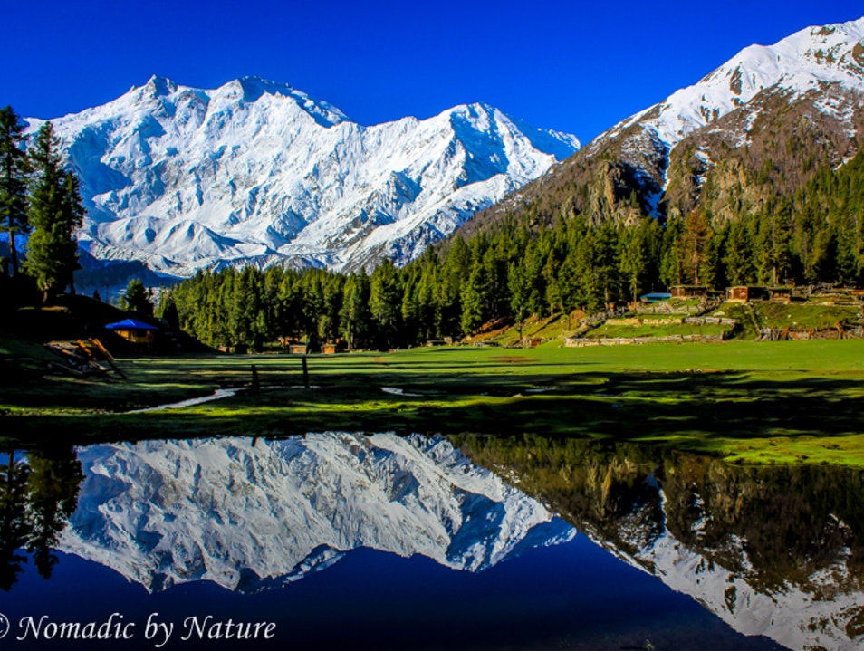 Fairy Meadows: Where the Legends of Killer Mountain Live Tattu  Pakistan