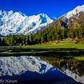 Fairy Meadows   Earth