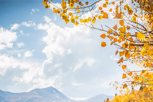The Best of Fall in Breckenridge