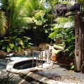 Spa Botanico's Purification Gardens at Dorado Beach, a Ritz-Carlton Reserve Dorado  Puerto Rico