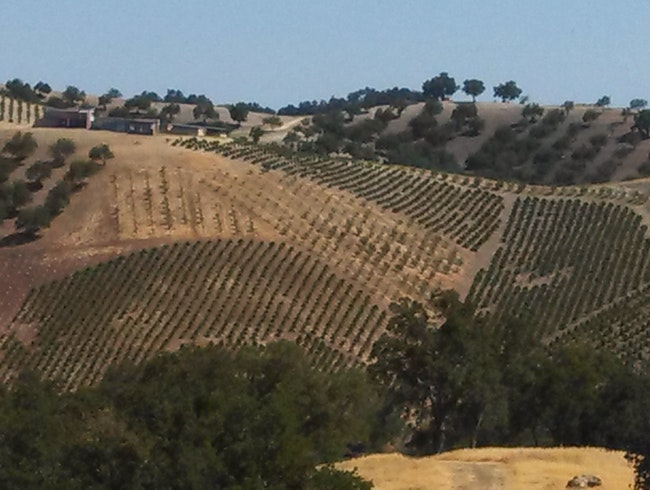 Paso Robles Wine Country, Central Coast California