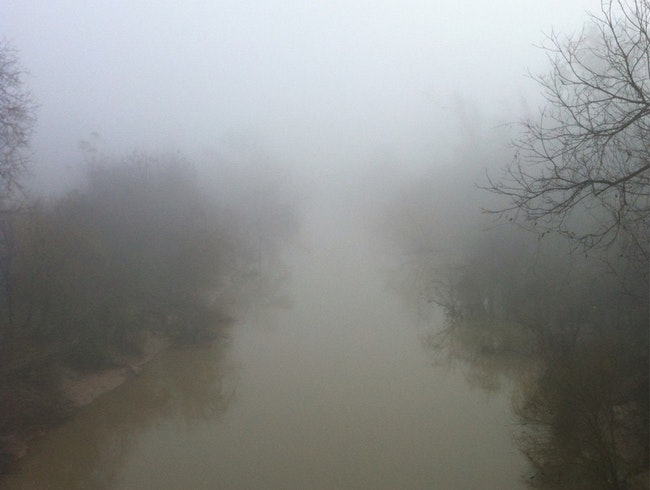 A Foggy Morning on the Bayou