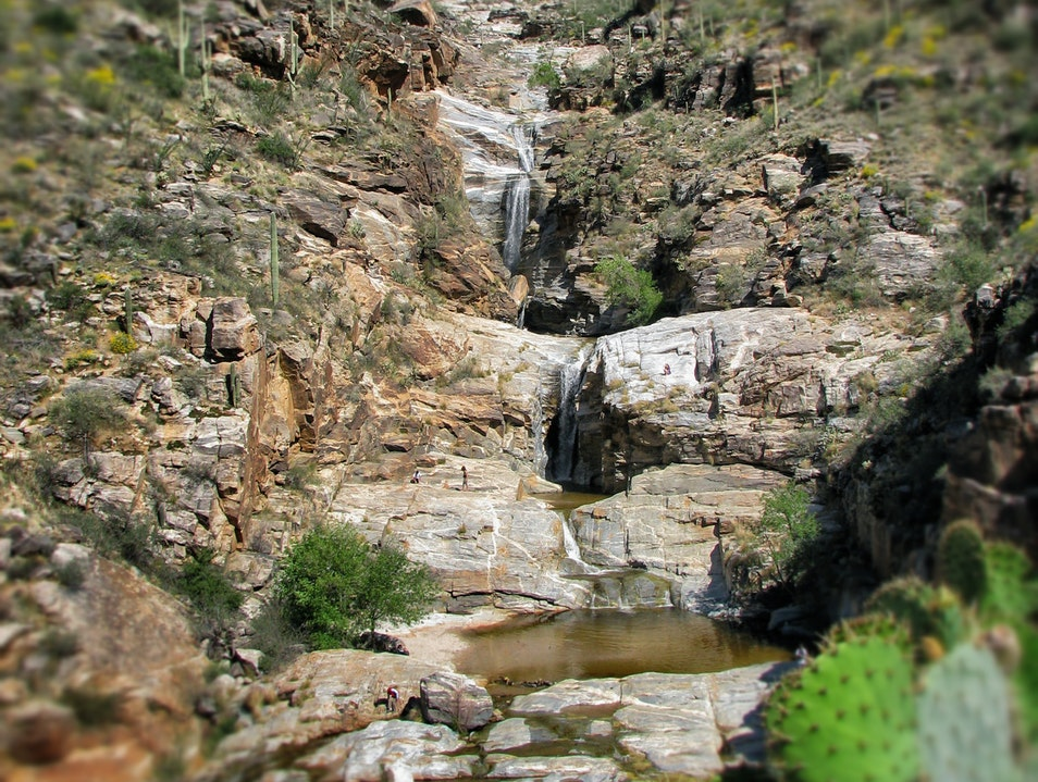 Waterfalls in the Desert: An Oasis in Bear Canyon Mt Lemmon Arizona United States