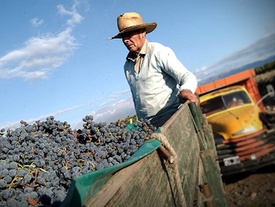 Personalized Experiences in Wine Country Mendoza  Argentina