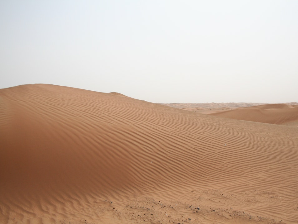 Dunes in the Arabian Desert Murqquab  United Arab Emirates