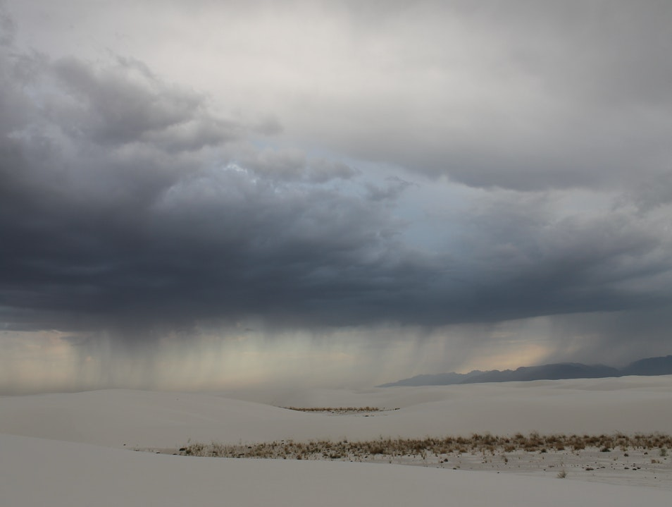 Rare rain  White Sands New Mexico United States