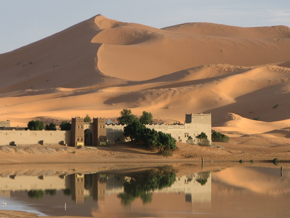 An Oasis in the Desert Errachidia Province  Morocco