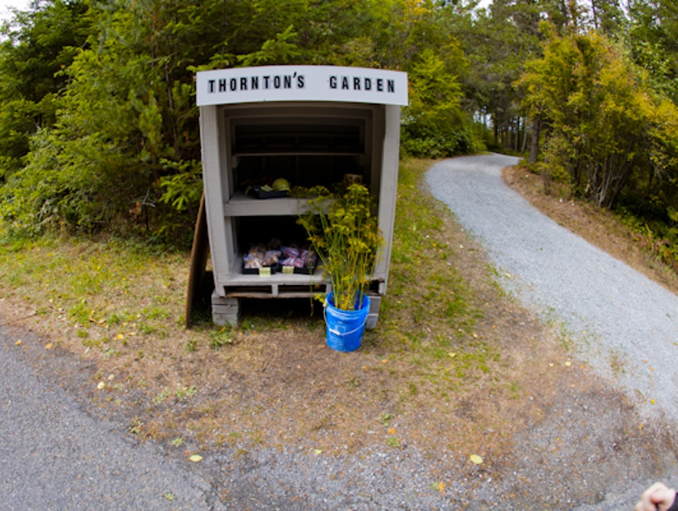 The friendliest San Juan Island: don't forget to wave!