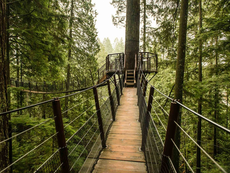 Treetop Adventure at Capilano Vancouver  Canada