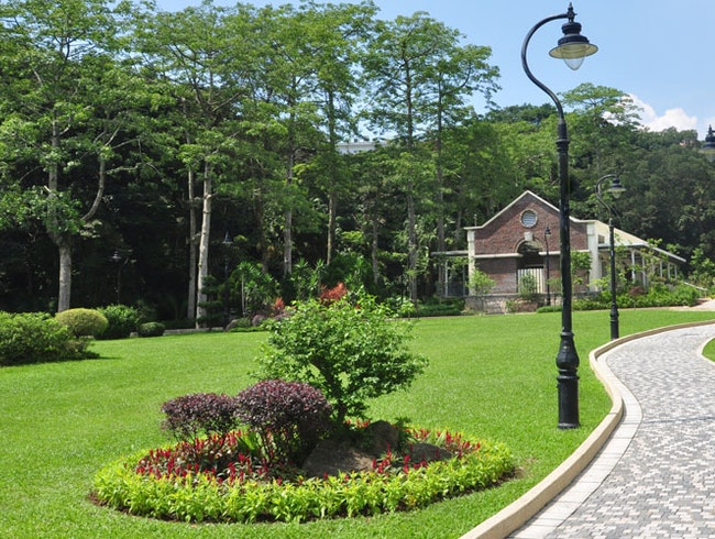 Visit Victoria Peak Garden and Mount Austin Playground