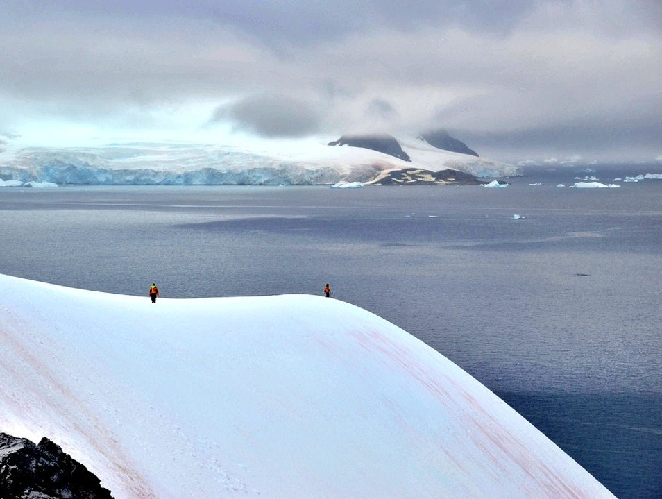 Hike a Snowy Mountain   Antarctica