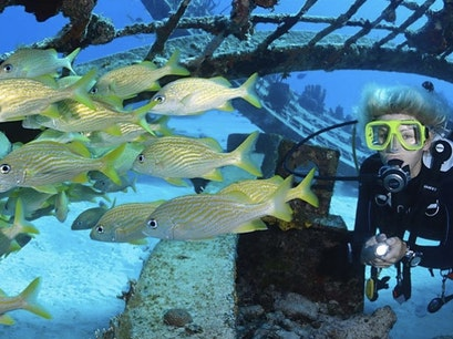 Dive Provo Providenciales And West Caicos  Turks and Caicos Islands
