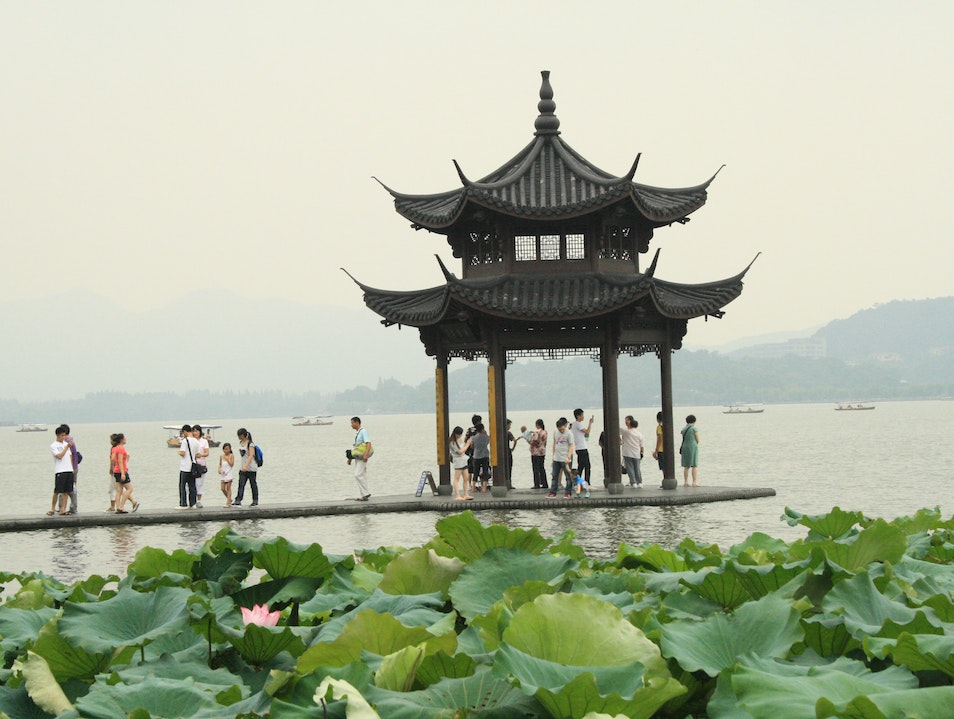 Lotuses at West Lake Hangzhou  China