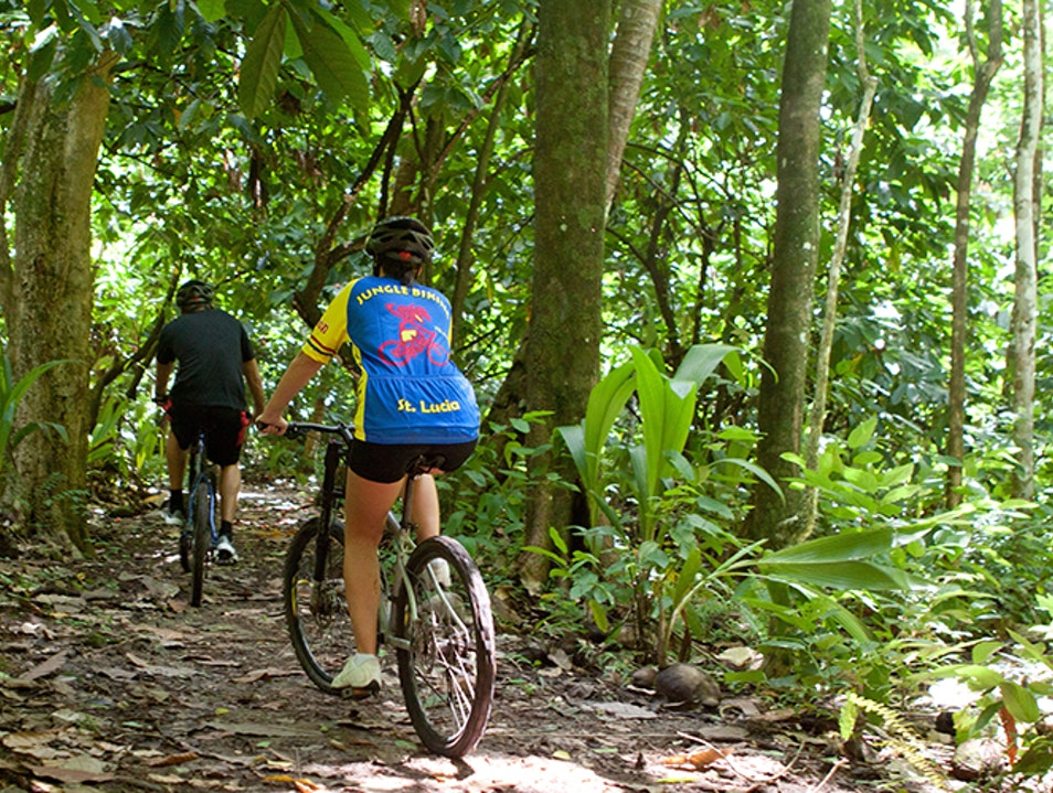 Jungle Biking Adventures Soufriere  Saint Lucia