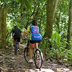 Bike the Jungle Trails