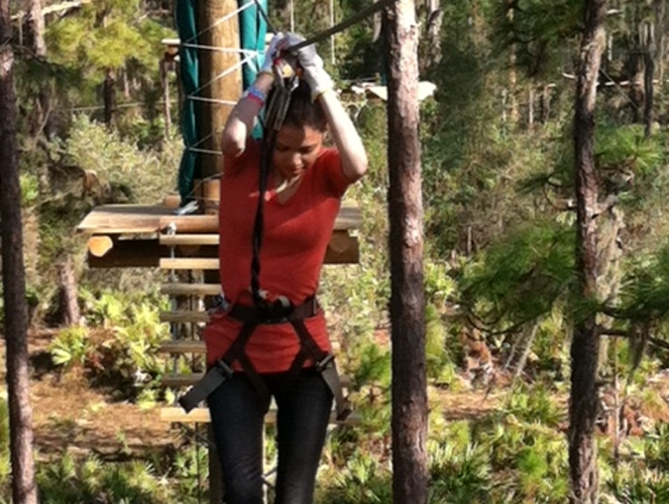 TreeUmph! - treetop adventure course Myakka City Florida United States