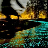 Van Gogh-Roosegaarde Bike Path
