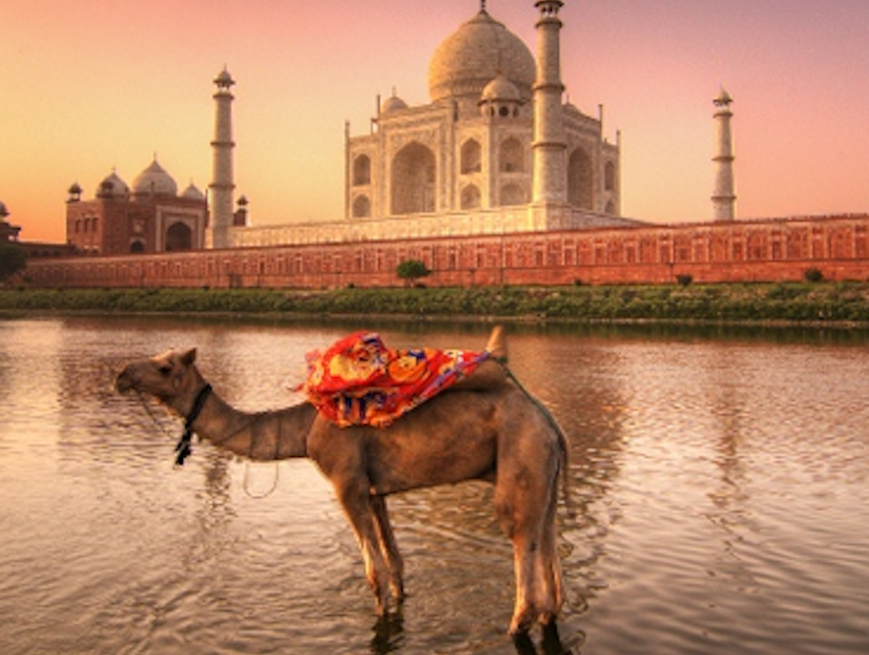 Best of India Private Tours with Car and Driver