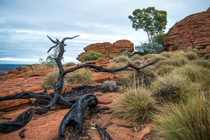 Kings Canyon - Watarrka National Park
