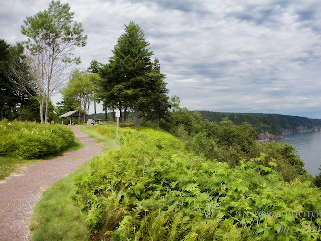 Drive, Hike, or Bike the Fundy Trail Parkway