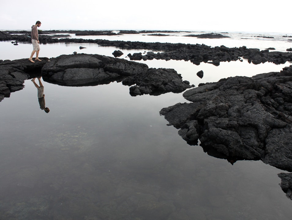 Wading the Tide Pools Pāhoa Hawaii United States