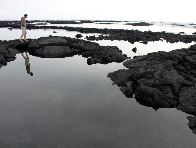 Wading the Tide Pools