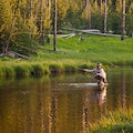 Yellowstone River Fishing CODY Wyoming United States