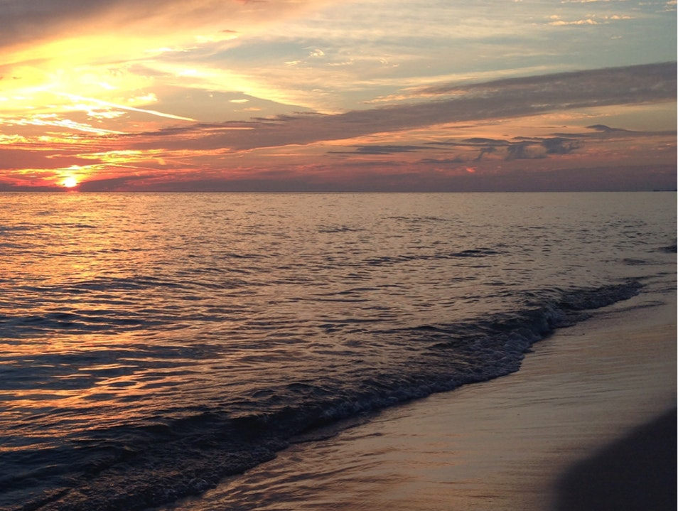 Sunsets With A Following Panama City Beach Florida United States