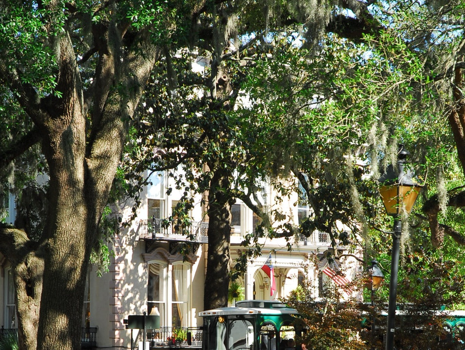 Exploring all that Savannah has to offer