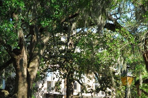 Old Town Trolley Tours Savannah