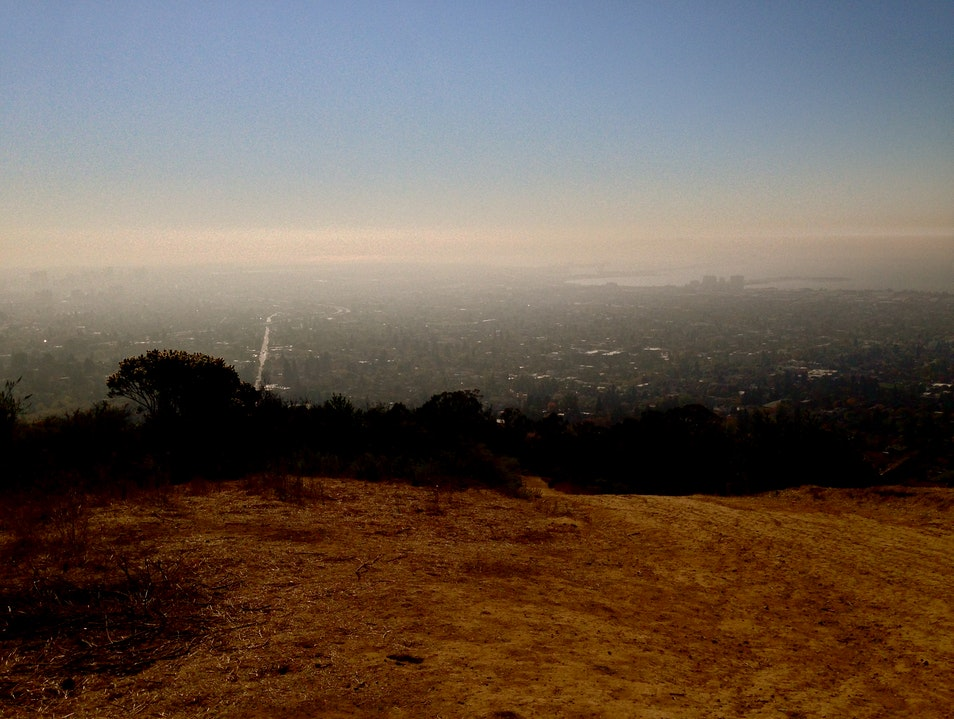 Berkeley Fire Trail...A View of the Whole City Berkeley California United States