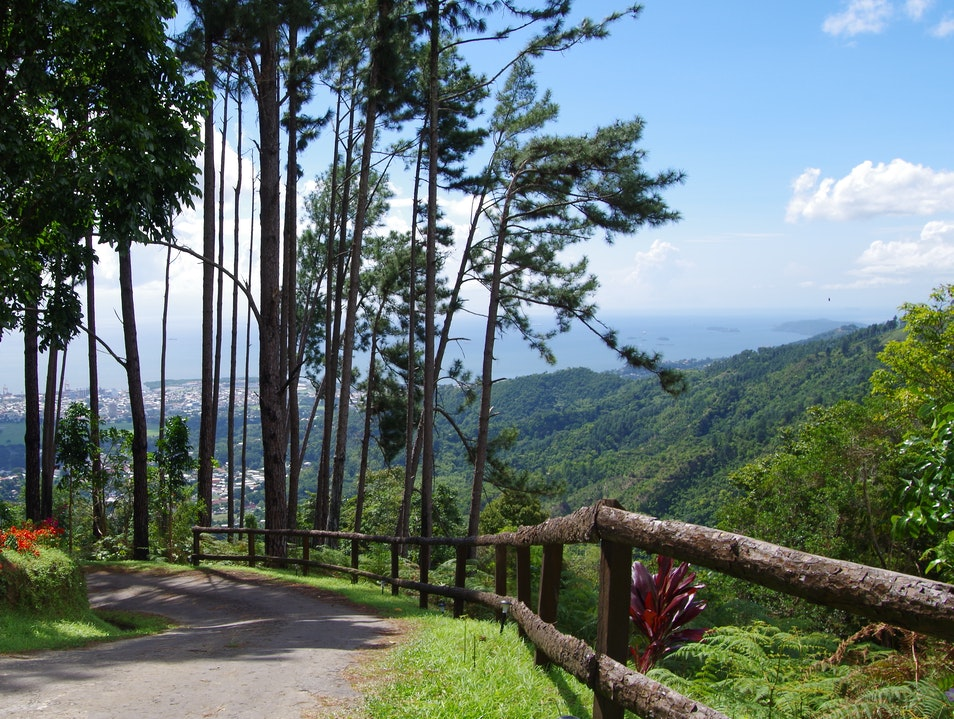 The Pines: An Exclusive Retreat Port Of Spain  Trinidad and Tobago