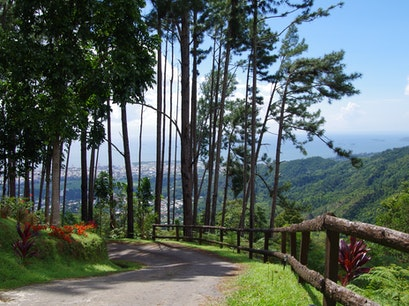 The Pines Port Of Spain  Trinidad and Tobago