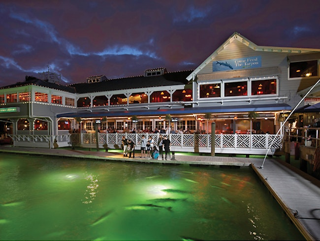 Fine Dining, Fun Bar, and Tarpon Feeding in Fort Lauderdale