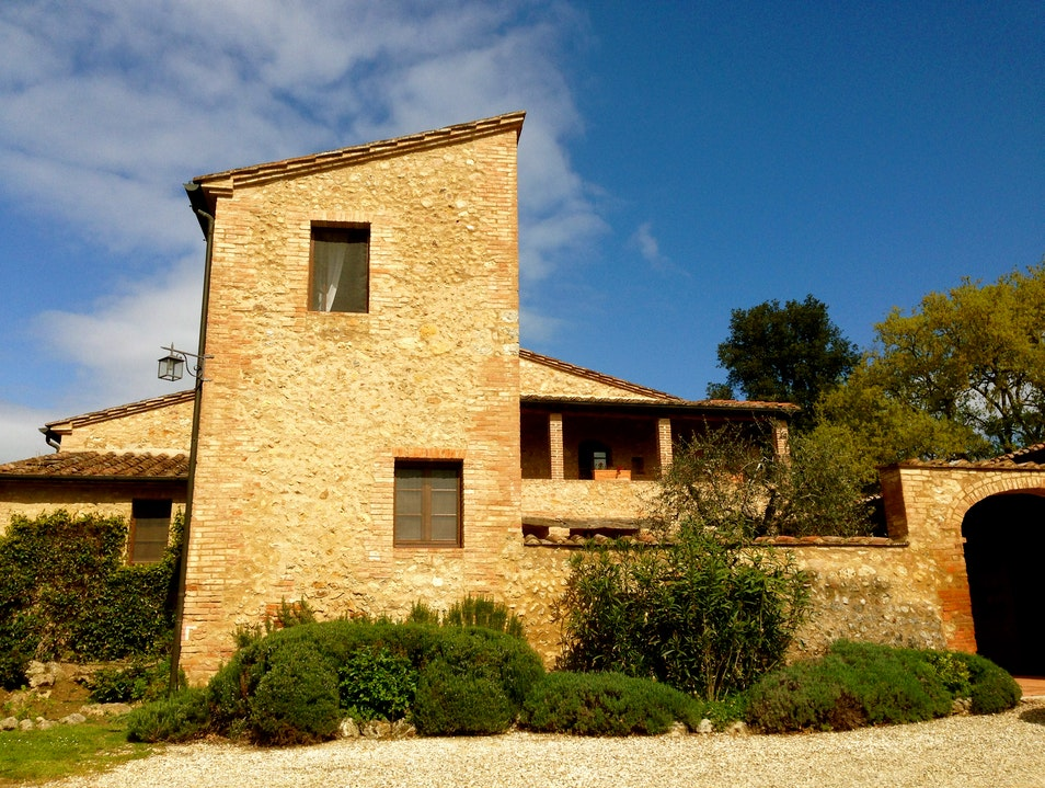 Rent a Tuscan farm house and pick olives