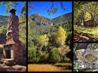 Ramsey Canyon Nature Preserve Hereford Arizona United States