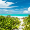 Tropic of Cancer Beach Moore Hill  The Bahamas