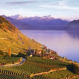 Lavaux, Switzerland