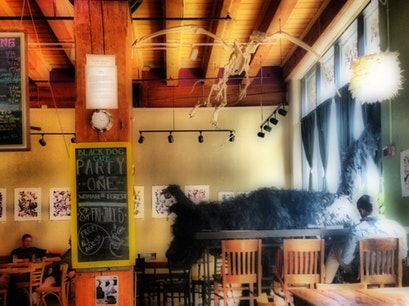 Black Dog Cafe Saint Paul Minnesota United States