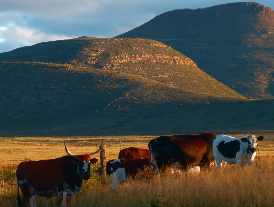 South Africa's Karoo Graaff Reinet  South Africa