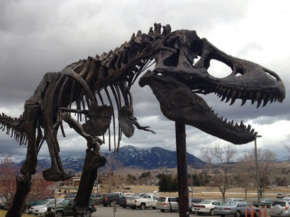Museum of the Rockies Bozeman Montana United States