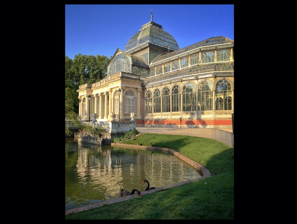 A Morning Run in Madrid: Black Swans and a Crystal Palace Madrid  Spain