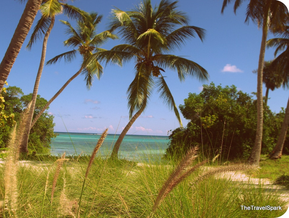 Exploring the 26 miles of the Punta Cana Hotel and Resort Grounds Punta Cana  Dominican Republic