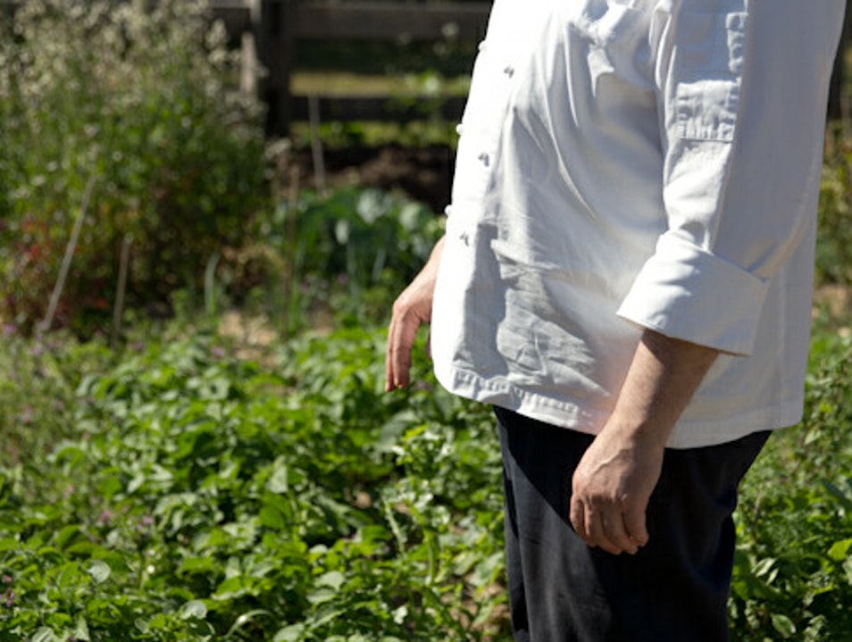 Chef's Garden and Table, Central Coast Killcare Heights  Australia