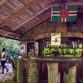 Original bush bar castleman dominica.jpg?1486945775?ixlib=rails 0.3