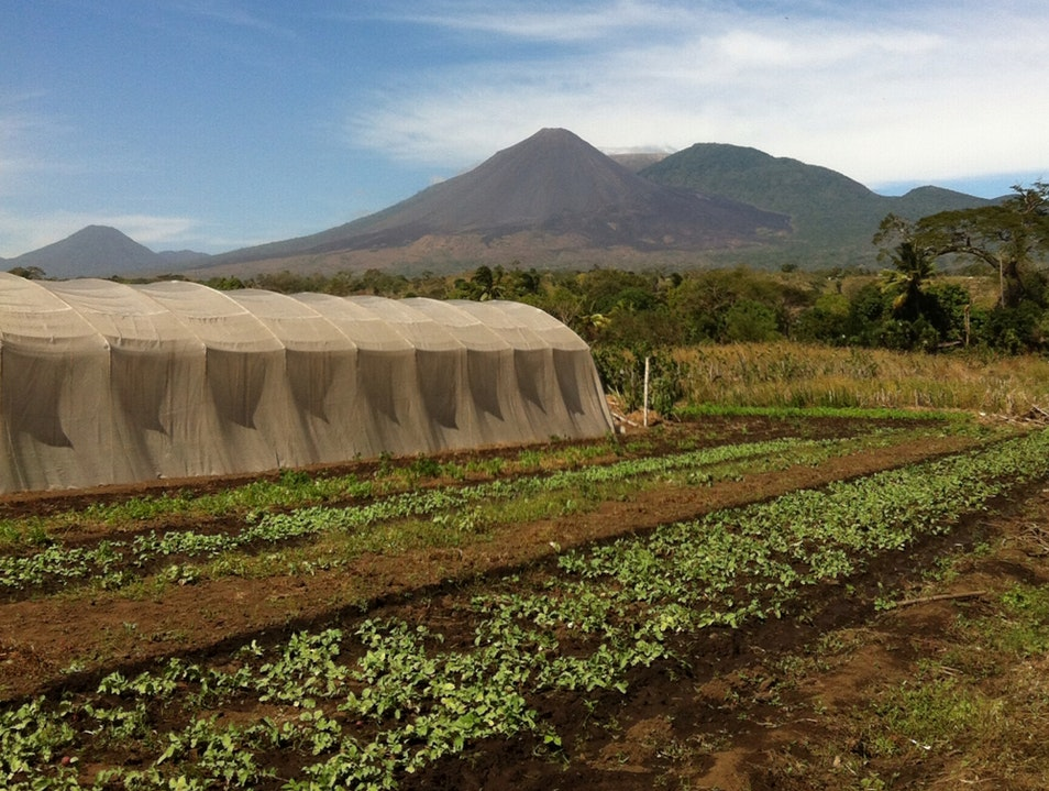 Farmers Under Watch Of Volcanos Sonsonate  El Salvador