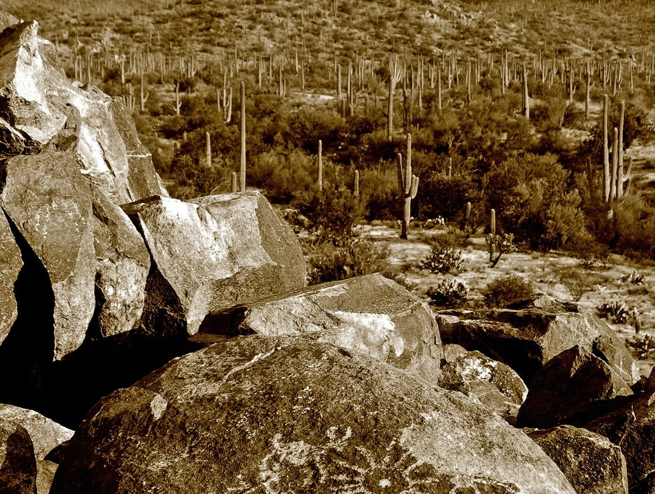 Petroglyphs—Traces of the Hohokam in the Sonoran Desert Tucson Arizona United States