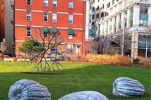 A Guide to Boston's Green Spaces
