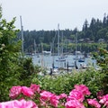 Harbour Public House Bainbridge Island Washington United States
